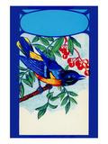 Bird Broom Label