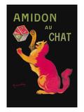 Amidon Au Chat