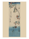 Small Bird on a Branch of Kaidozakura (Kaido Ni Shokin)