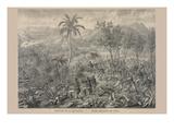 Battle of La Quasina Near Santiago De Cuba