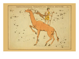 Camelopardalis  Tarandus and Custos Messium