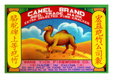 Camel Brand Extra Selected Firecracker