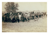 Roping and Changing Scene at Camp on Round Up on Cheyenne River