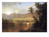 Tropical Scene
