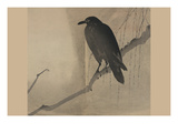 Crow on a Willow Branch