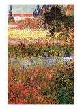Flowering Garden with Path Reproduction d'art par Vincent Van Gogh