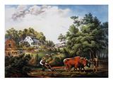 American Farm Scene  1853
