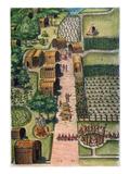 Algonquian Village  1590
