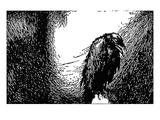 Poe: The Raven  1845