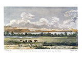 Buffalo  19th Century
