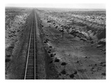 Railroad Tracks  1939
