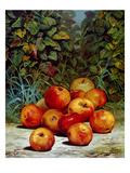 Apples  1868