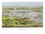 New York Harbor  1872