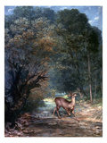 Courbet: Hunted Deer  1866