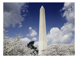 Washington Monument  2007