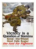 World War I: Poster  1917