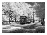 New Orleans: Streetcar