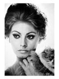 Sophia Loren (1934-)
