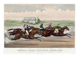 Jerome Park Horse Race  1873