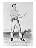 American Boxer  1860