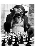 Checkmate Giclée