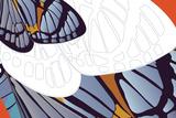 Shadowed Wing of Iris