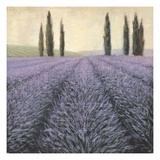 Lavender Horizon Detail