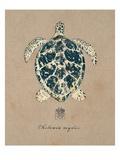 Vintage Linen Tortoise