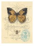 Honeybee Papillon