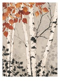 Birch Tapestry