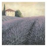 Lavender Hills Detail