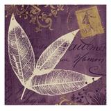 Lavender Laurel