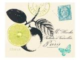 Lime Letter
