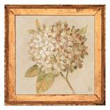 Hydrangea Floret Detail