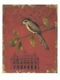 Songbird Recollection