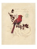 Filigree Cardinal