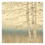 Birch Silhouette 2