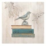 Aviary Library