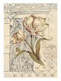 Tulip Etching
