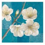 Blossom Bough