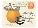 Orange Letter