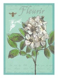 Fleurir Nouveau