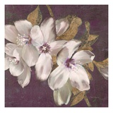 Plum Blossoms 2 Reproduction d'art par Jurgen Gottschlag