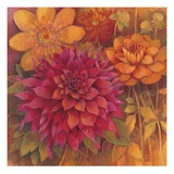 Autumn Dahlias 1