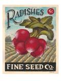 Ravishing Radishes