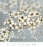 Silver Blossoms II