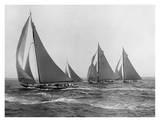 Sloops at Sail  1915