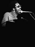 Stevie Wonder Performs in Concert