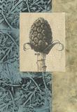 Embellished Nature's Vignette III
