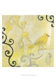 Canary I
